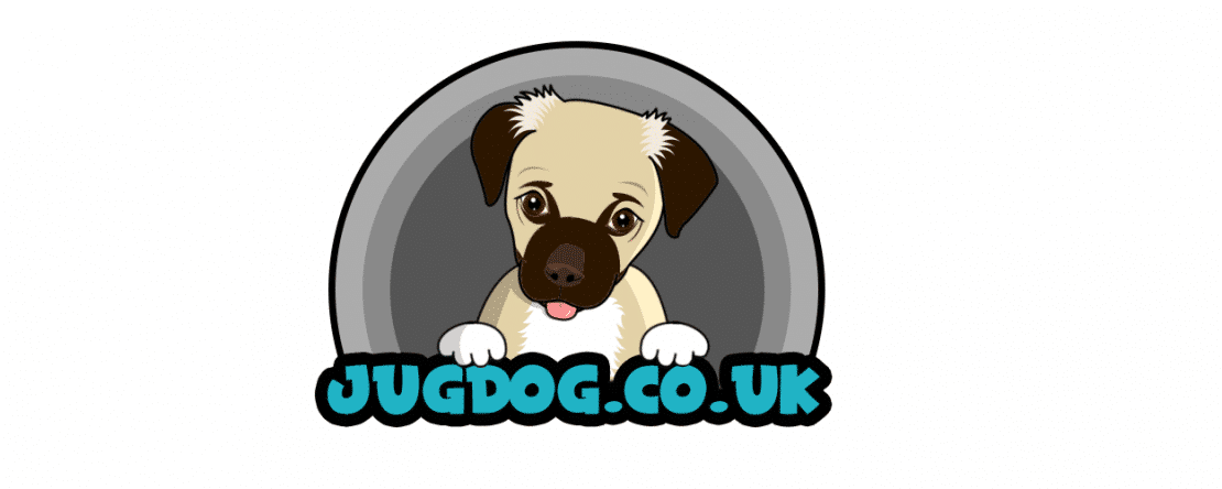 Best Dog Beds 2019 Uk Complete Buyers Guide And Reviews Jug Dog