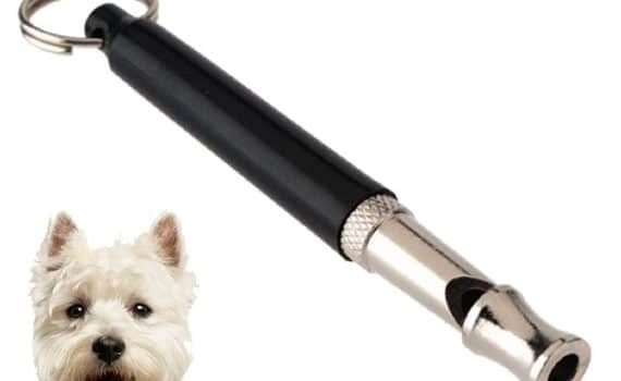 Lupo Dog Whistle