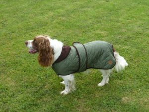 Country Pet Quilted Dog Coat