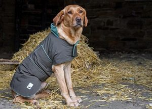 dog-field-2-in-1-waterproof-dog-coat