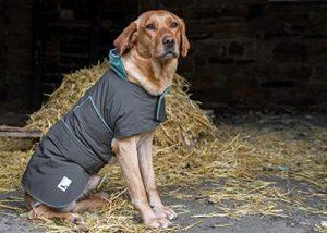 dog-field-2-in-1-waterproof-dog-coat