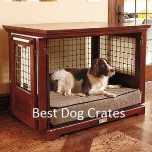 What is the best dog cage?