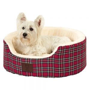 Bunty Pet Basket