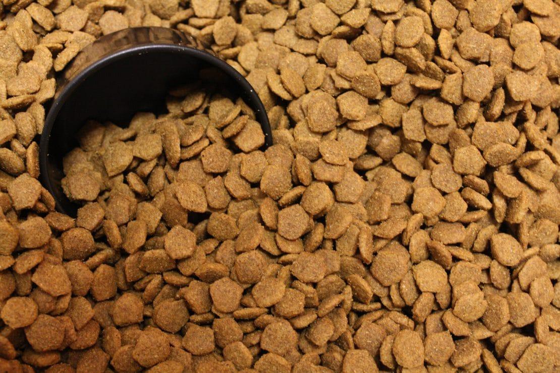Dry Dog Food