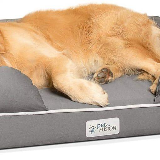 Best Dog Beds UK