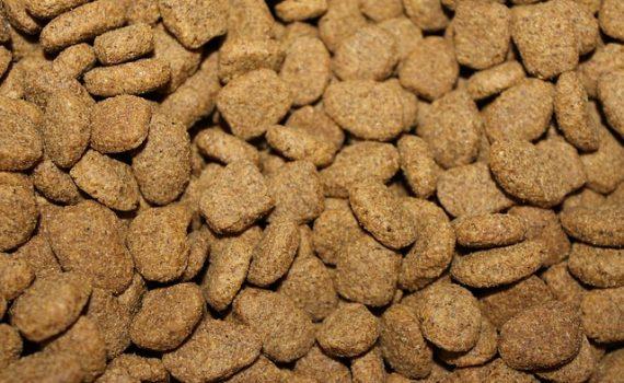 High fibre dog food