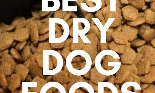 The Best Dry Dog Foods UK