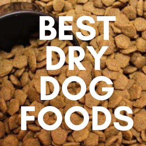 The Best Dry Dog Foods UK