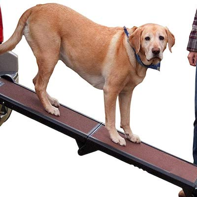 Pet Gear Tri Fold Dog Ramp 1