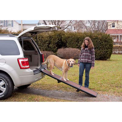 Pet Gear Tri Fold Dog Ramp 3