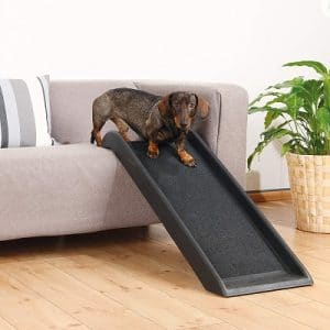 Trixie Indoor Dog Ramp 3