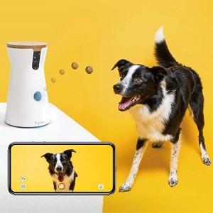 Furbo Dog Camera 3