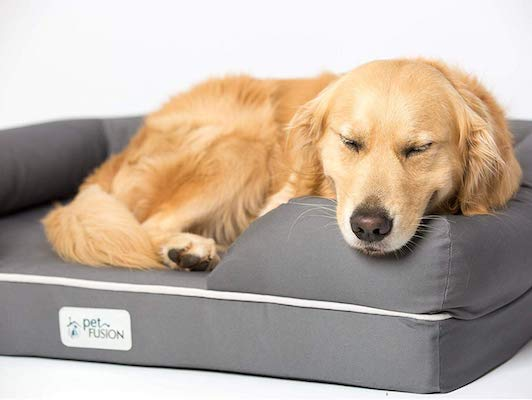 Pet Fusion Dog Bed 1