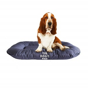 The Dog's Bed Premium Waterproof Dog Bed 1