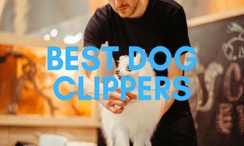 best dog clippers uk
