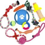best teething toys for puppies
