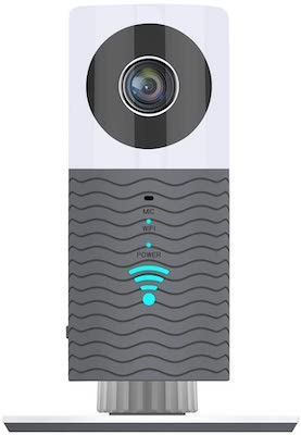 Clever Dog Camera