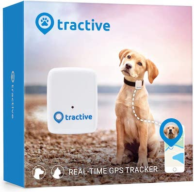 Tractive Dog Tracker Review