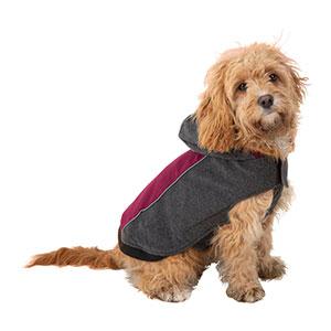 dog walking fleece