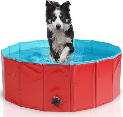 Bramble Dog Paddling Pool With High Walls