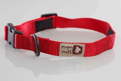 Magno Mutt - Advanced Magnetic Dog Collar