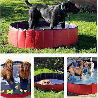 best dog paddling pool