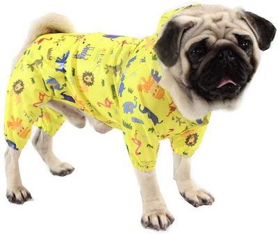 BbearT Pug Raincoat