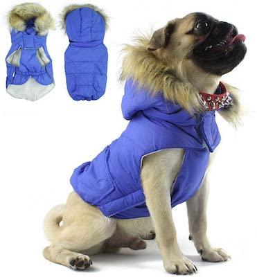 Morezi Pug Snowsuit