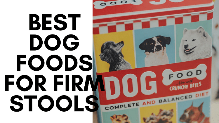 best dog foods for firm stools
