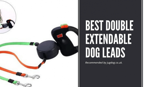 best double extendable dog leads