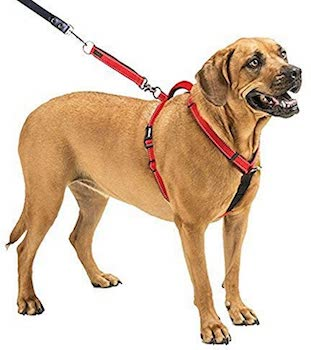 SPORN non pull Dog Harness
