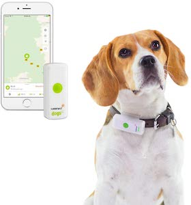 Weenect Pet Tracker