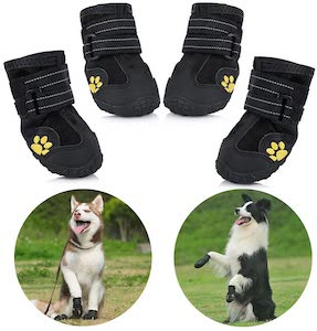 dog winter boots