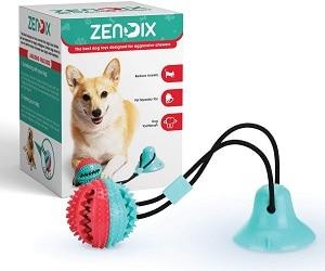 Zendix Chew