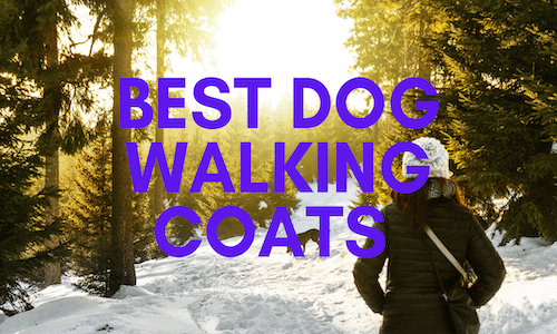 best dog walking coats