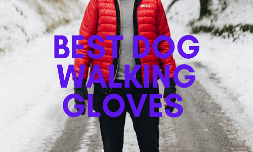 best dog walking gloves